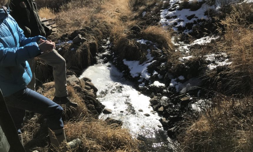 Protecting our Agricultural Land and Water: Updating the Rozich Ditch